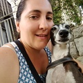 Small profile